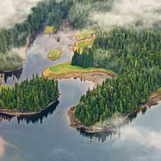 Luftaufnahme der Wälder und Seen, Misty Fjords National Monument, Alaska