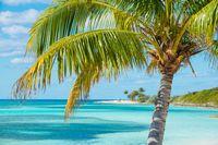 Karibik mit der Queen Mary 2