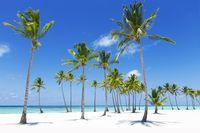 Farbenfrohe A-B-C-Inseln