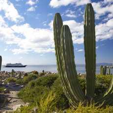 Die Jocelyn Pride der Un-Cruise Adventures in Mexico