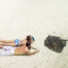 Rochen am Abaco Manjack Cay