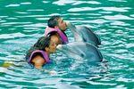 """Begegnung mit Delfinen - """"Dolphin Swim"""" (Nassau)"""