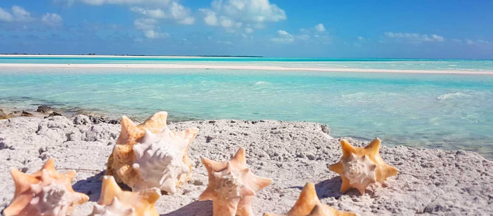 Karibiktraum Bahamas