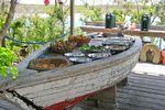 So lässt es sich Frühstücken auf Exuma Bahamas