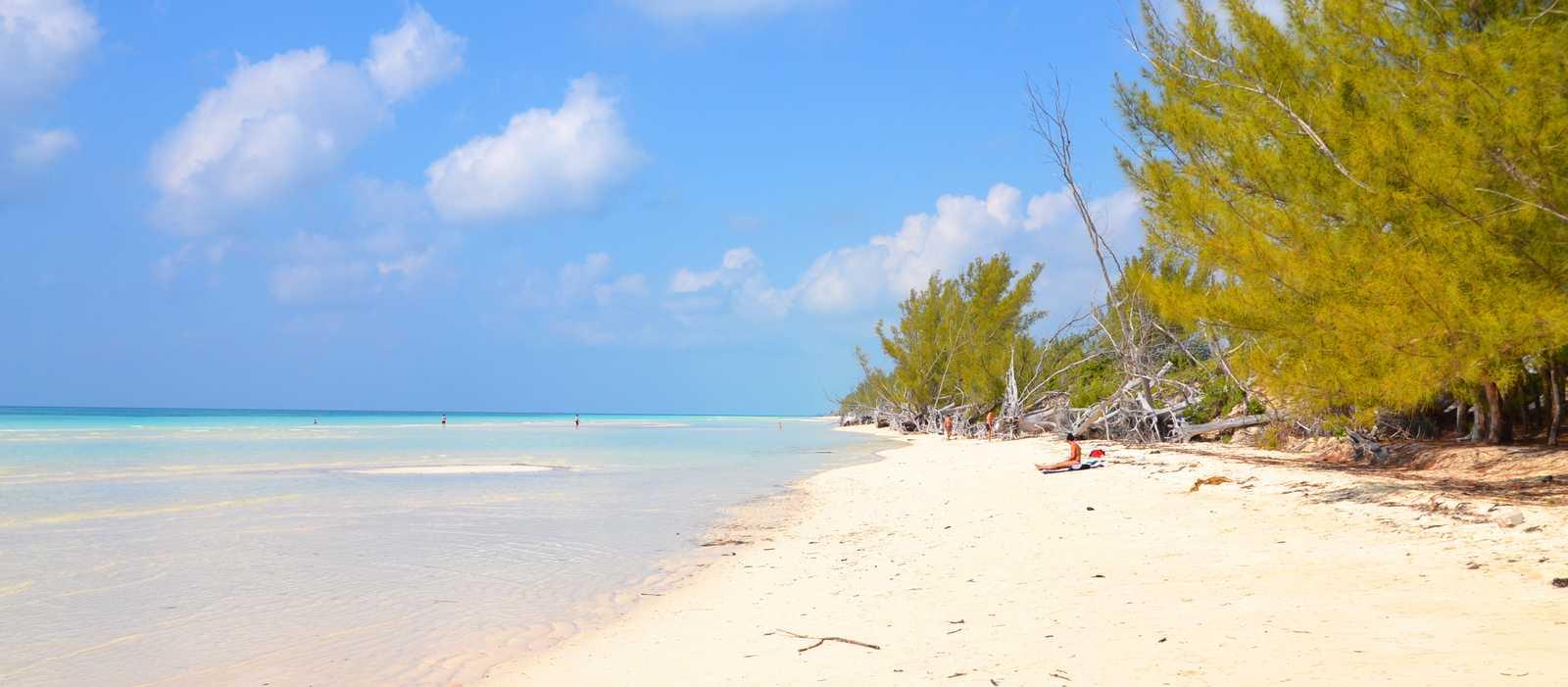 Strand auf der Grand Bahama