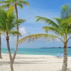 Strand mit Palmen in Nassau