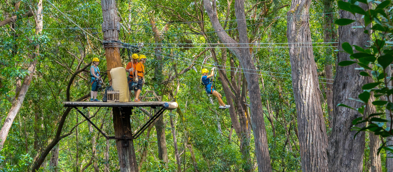 Klettern im Kohala Resort mit Kohala Zipline