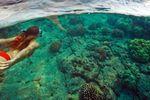 Eine Schnorchel-Tour auf Big Island, Hawaii