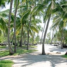 Impressionen von der Westkueste Bis Islands