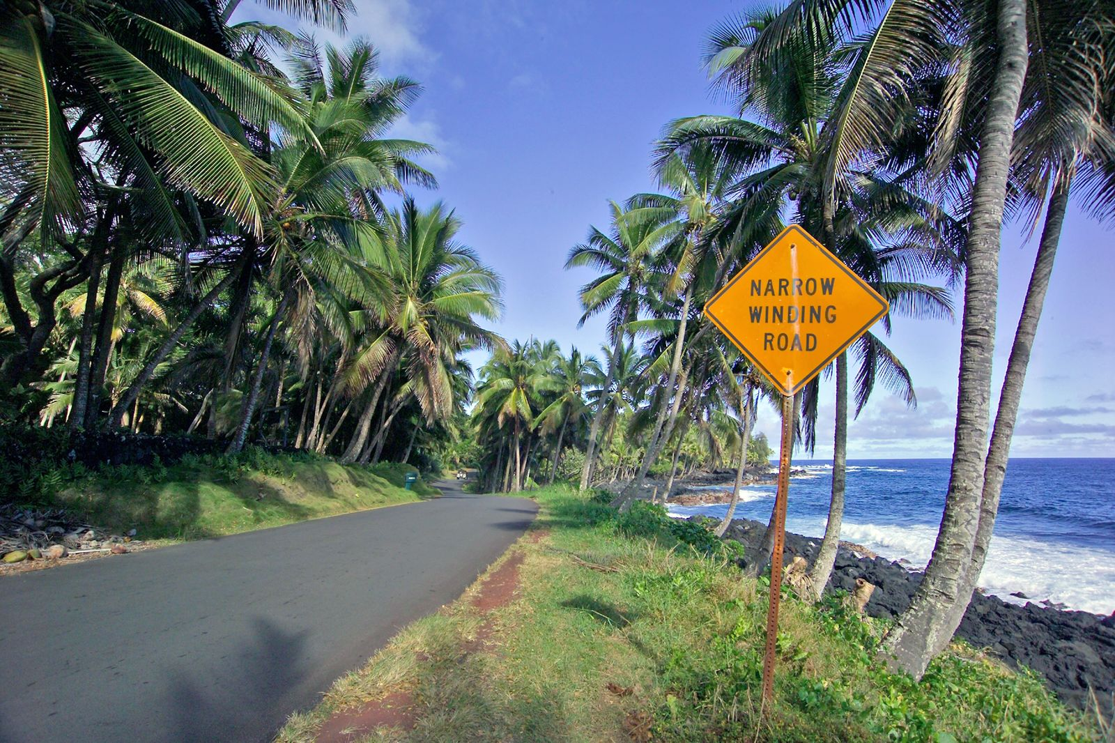 Oceanside Drive Puna