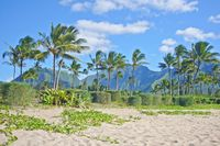 Zauberhafte Kleinode im Pazifik
