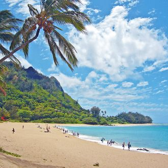 Der traumhafte Tunnels Beach auf Kauai, Hawaii