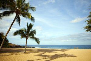 Ein Palmenstrand auf Lanai, Hawaii