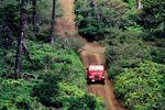 Mit dem Jeep unterwegs auf dem Munro Trail Lanai, Hawaii
