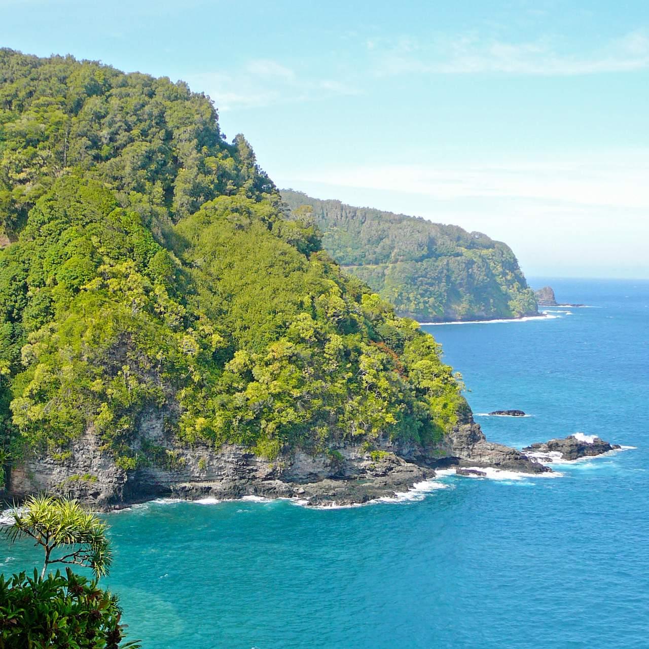 The Lanai Restaurant And Bar Kauai