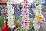 Die vielfältige Kunst und Kultur von Hawaii