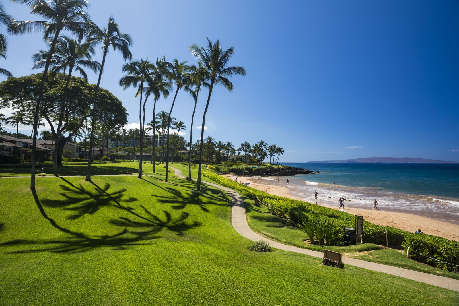 Walkway through a large lawn near South Maui beach