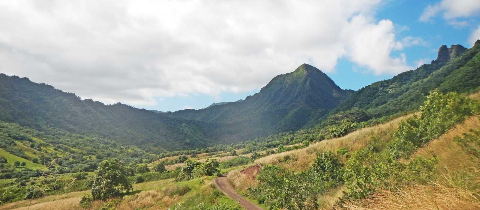 Landschaft im Tal der Kualoa Ranch