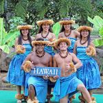 Hawaiian Discovery - Standard Kategorie