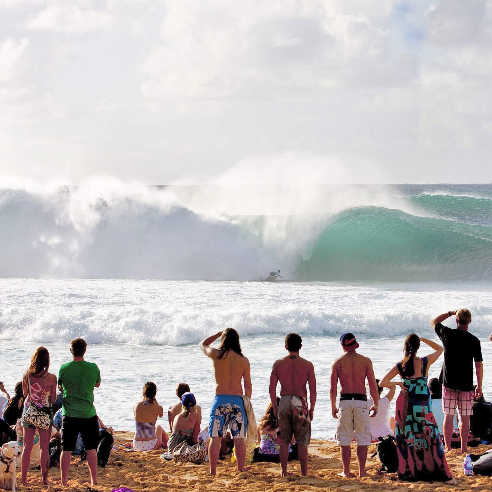 Zuschauer beim Vans Triple Crown Surfing Event auf Oahu, Hawaii