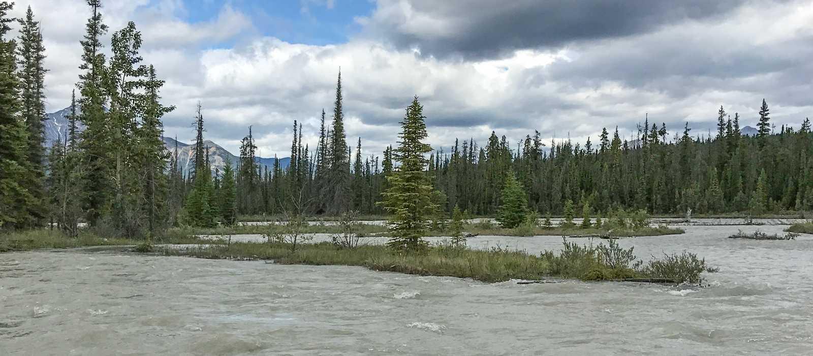 Unterwegs auf dem Athabasca River