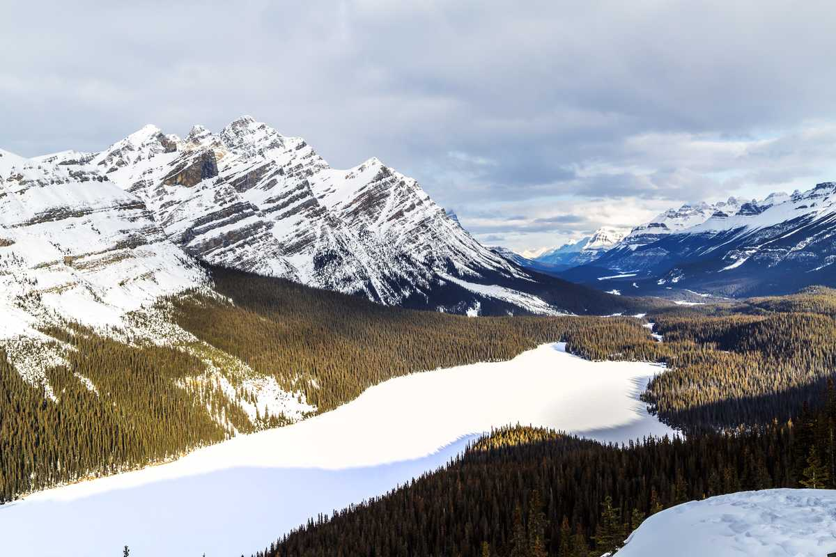 Peyto Lake am Icefields Parkway in Alberta