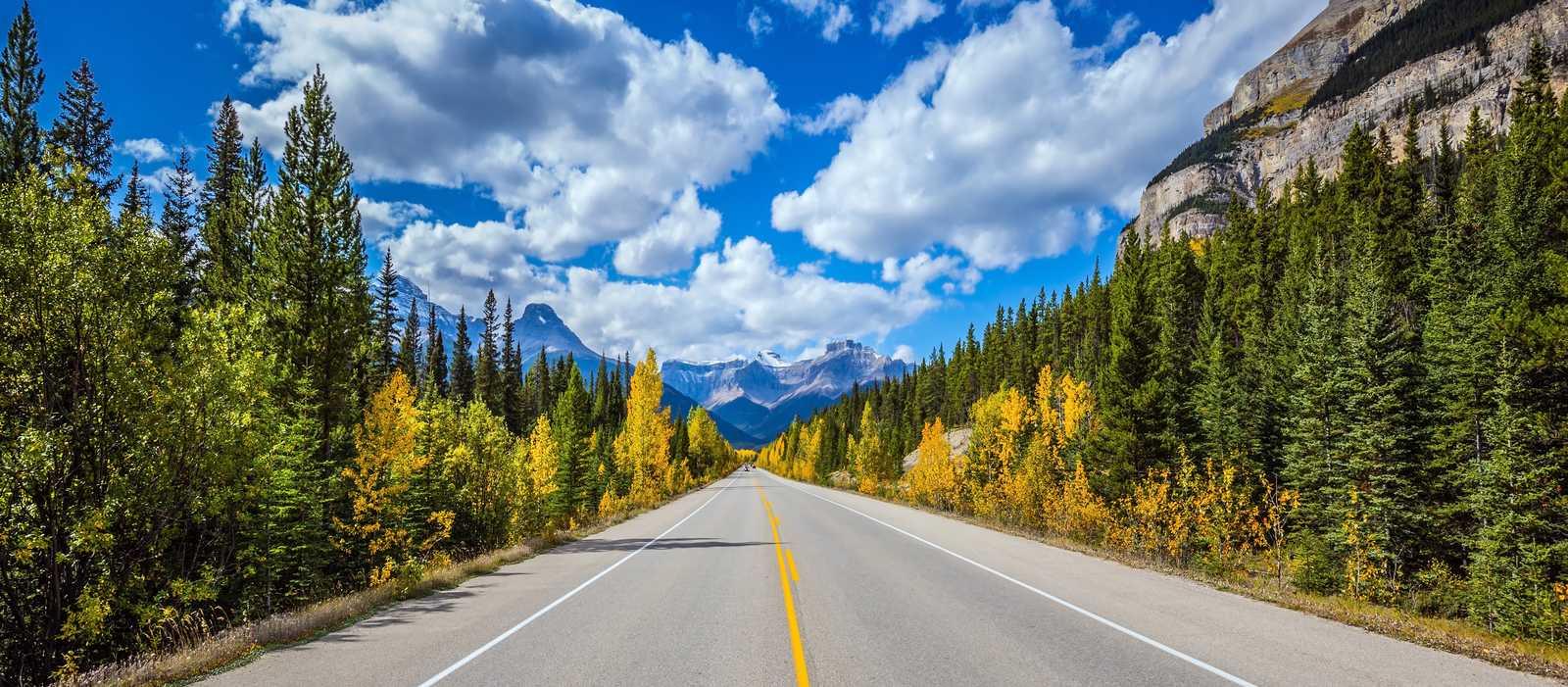Landstrasse an den kanadischen Rocky Mountains, Great Banff