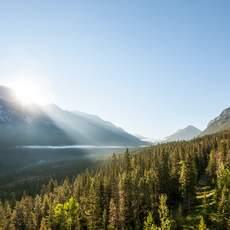Die Sonne über dem Banff Nationalpark