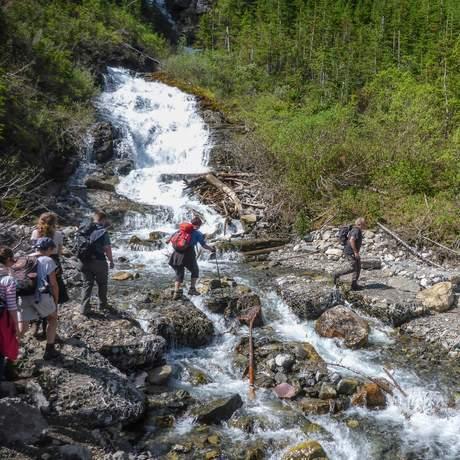 Wandern auf dem Bourgeau Lake Trail in Alberta