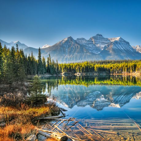 Der Herbert Lake am Icefields Parkway
