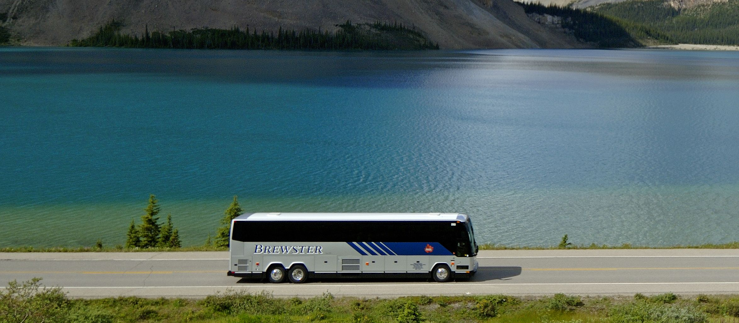 Brewster Bus am Bow Lake