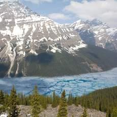 Blick auf Peyto Lake vom Bow Summit