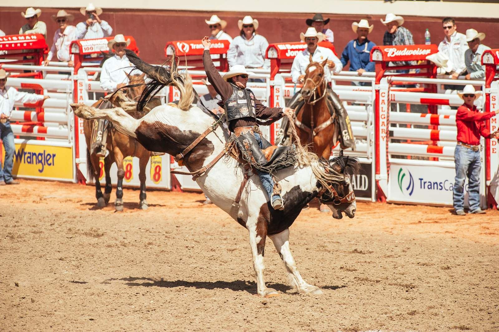 Impression Calgary Stampede