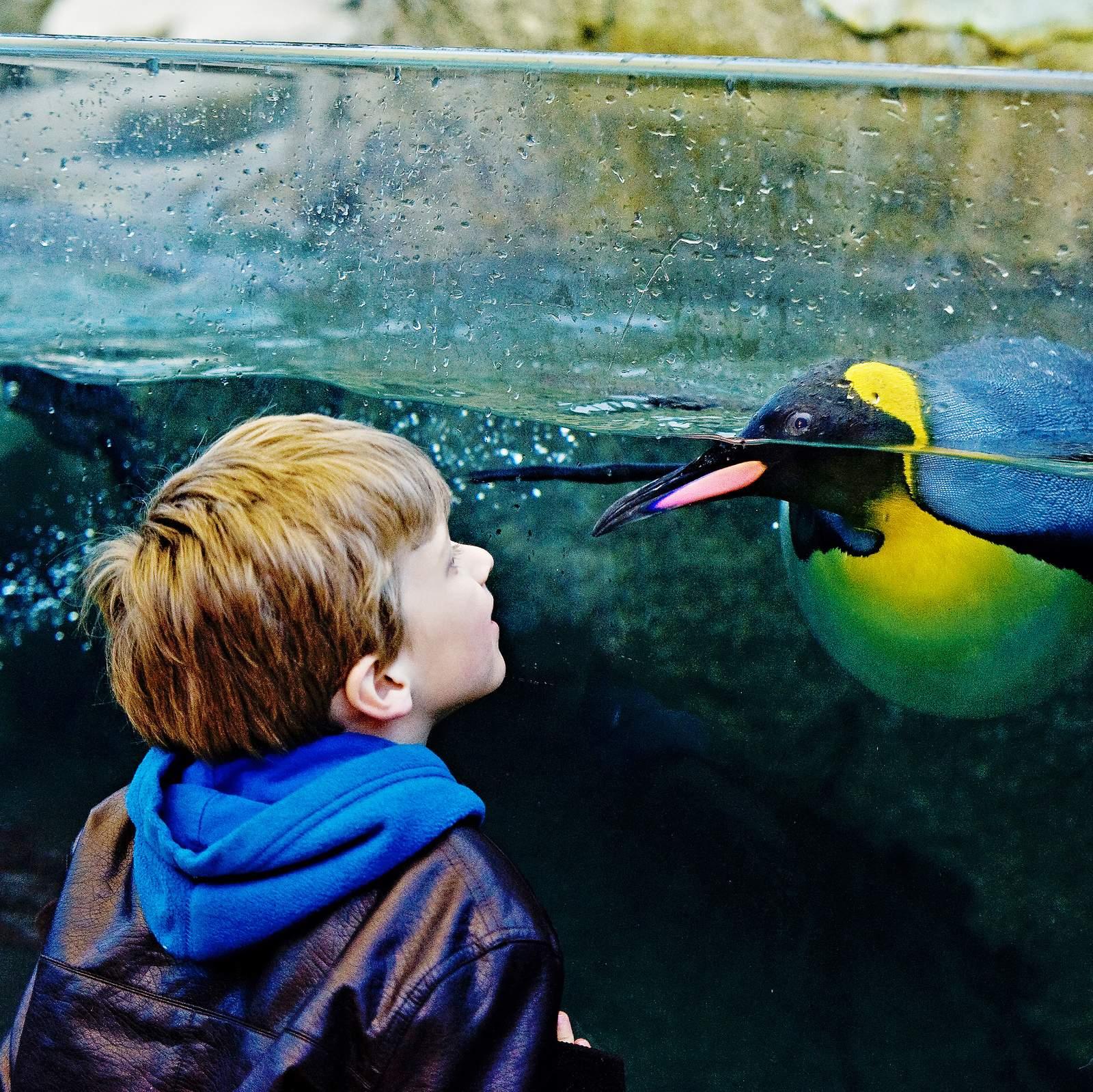 Im Calgary Zoo