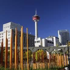 Ausflug Calgary Tower, 48h