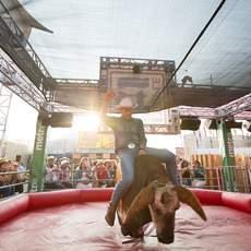 Ein Cowboy beim Rodeoreiten während dem Calgary Stampede in Alberta