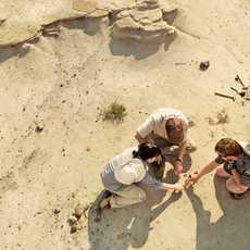 Ausgrabung im Dinosaur Provincial Park