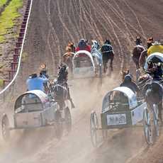Chuckwagon Race bei der Calgary Stampede