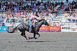 Stampede Rodeo in Edmonton