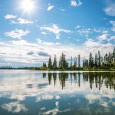 Gewässer im Elk-Island-Nationalpark