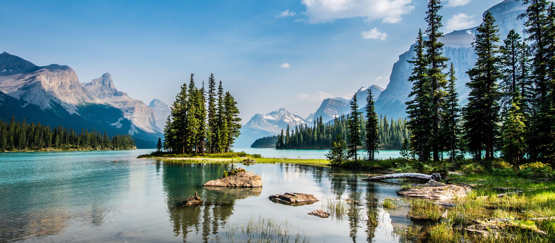 Impression Jasper National Park