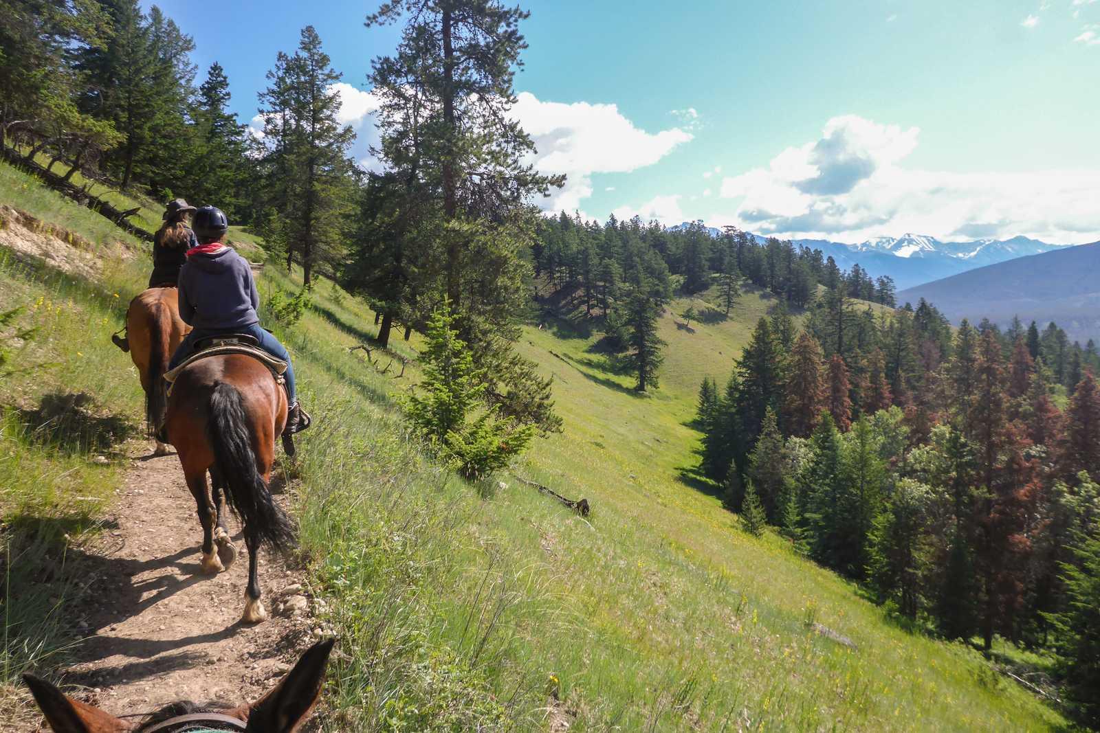 Maja Sebode macht einen Ausritt mit Jasper Park Riding Stables im Jasper National Park