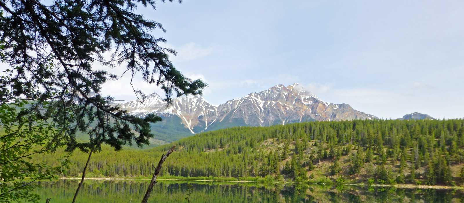 Die Natur von Jasper