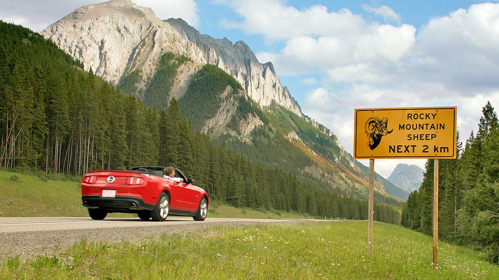 Strassenschild im Bow Valley Provincial Park, Kananaskis Country, Alberta