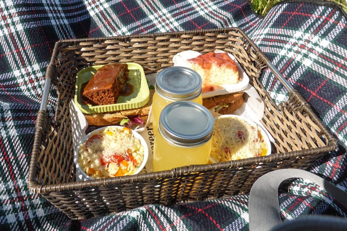 Leckeres Picknick in Ferryland