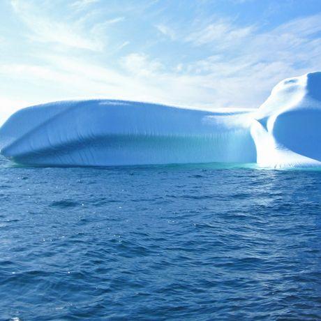 Eisberge an der Iceberg Alley