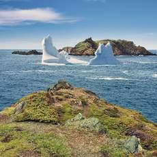 Eisberg an den New World Islands