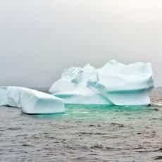 Eisberge im Torngat Mountains National Park