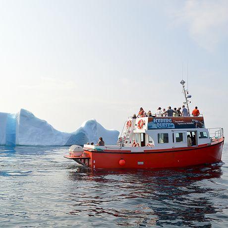 Iceberg Quest Tour Twilingate, Neufundland und Labrador