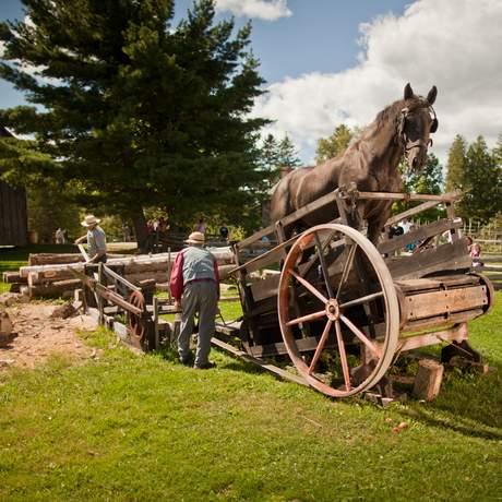 mit Pferdekraft betriebene Schleppsäge in Kings Landing, New Brunswick